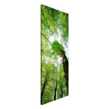 Magnettafel - Bäume des Lebens - Memoboard Panorama Hoch