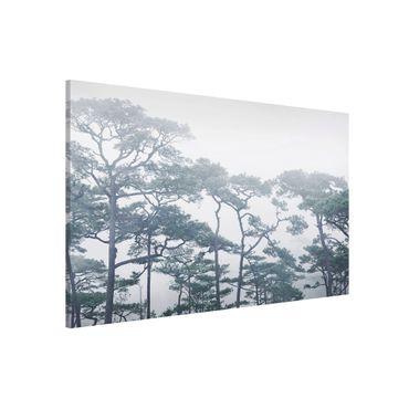 Magnettafel - Baumkronen im Nebel - Memoboard Querformat