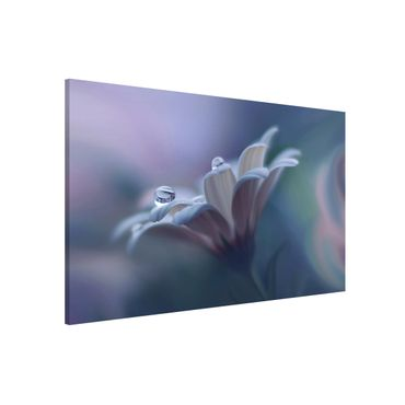 Magnettafel - Behind Closed Eyes - Memoboard Querformat