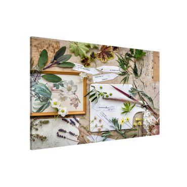 Magnettafel - Blumen und Gartenkräuter Vintage - Memoboard Querformat