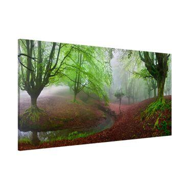 Magnettafel - Der Wald Marvillador - Memoboard Panorama Quer
