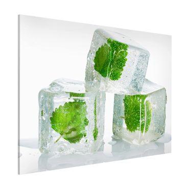 Magnettafel - Drei Eiswürfel mit Melisse - Memoboard Querformat
