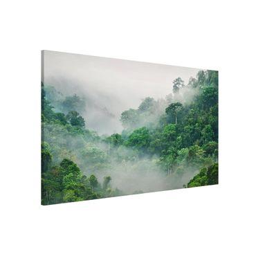 Magnettafel - Dschungel im Nebel - Memoboard Querformat