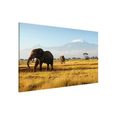 Magnettafel - Elefanten vor dem Kilimanjaro in Kenya - Memoboard Panorama Quer