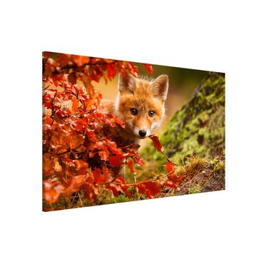 Magnettafel - Fuchs im Herbst - Memoboard Quer