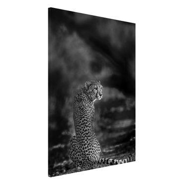 Magnettafel - Gepard in der Wildness - Memoboard Hochformat 3:2