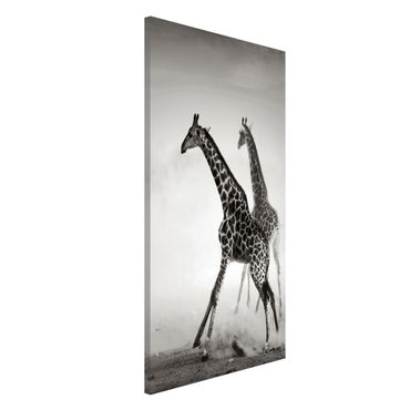 Magnettafel - Giraffenjagd - Memoboard Hoch