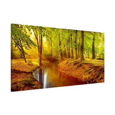 Magnettafel - Herbstwald - Memoboard Panorama Quer