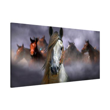 Magnettafel - Horses in the Dust - Memoboard Panorama Querformat