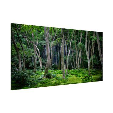 Magnettafel - Japanischer Wald - Memoboard Panorama Quer