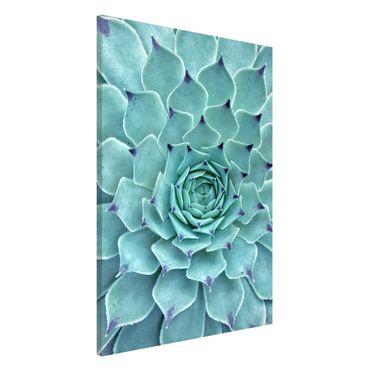 Magnettafel - Kaktus Agave - Memoboard Hochformat