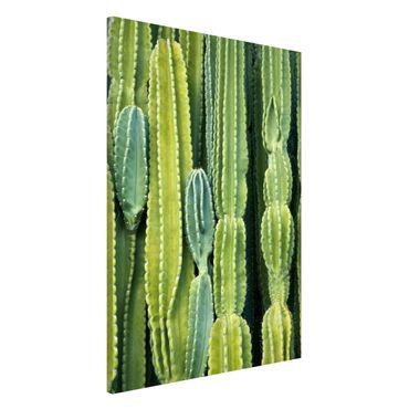 Magnettafel - Kaktus Wand - Memoboard Hochformat