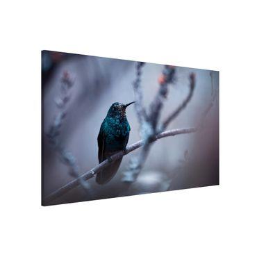Magnettafel - Kolibri im Winter - Memoboard Quer