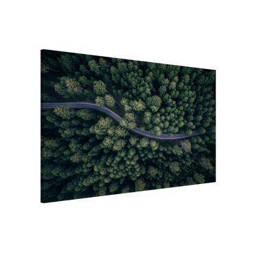 Magnettafel - Luftbild - Waldstraße von Oben - Memoboard Querformat 2:3