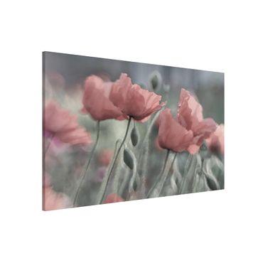 Magnettafel - Malerische Mohnblumen - Memoboard Quer