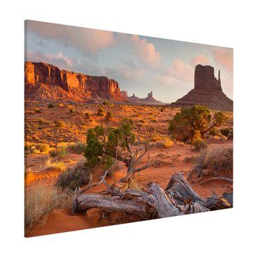 Magnettafel - Monument Valley Navajo Tribal Park Arizona - Memoboard Querformat