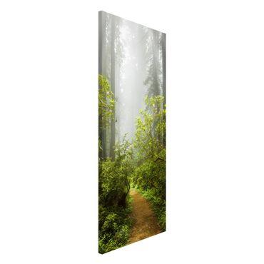 Magnettafel - Nebliger Waldpfad - Memoboard Panorama Hochformat