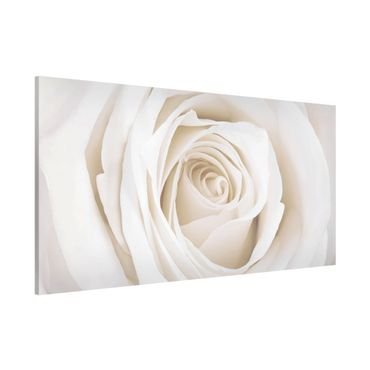 Magnettafel - Pretty White Rose - Blumenbild Memoboard Panorama Quer