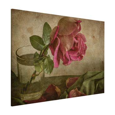 Magnettafel - Tear of a Rose - Memoboard Quer