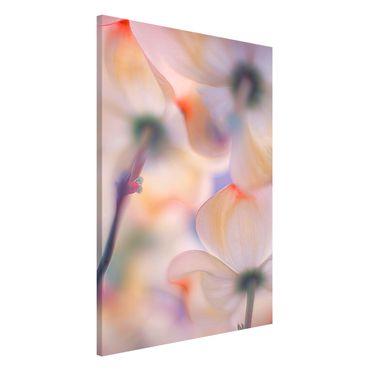 Magnettafel - Unter Blüten - Memoboard Hoch