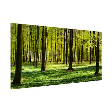 Magnettafel - Waldwiese - Memoboard Panorama Quer