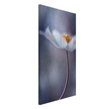 Magnettafel - Weiße Anemonenblüte - Memoboard Hochformat