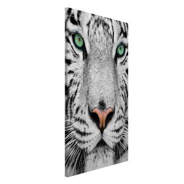 Magnettafel - Weißer Tiger - Memoboard Hoch
