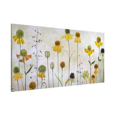 Magnettafel - Zarte Helenium Blüten - Memoboard Panorama Querformat