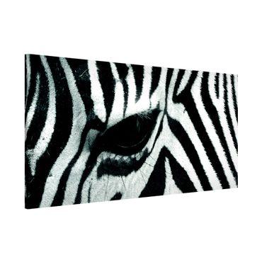 Magnettafel - Zebra Crossing - Memoboard Panorama Quer