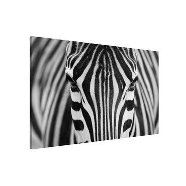 Magnettafel - Zebra Look - Memoboard Querformat