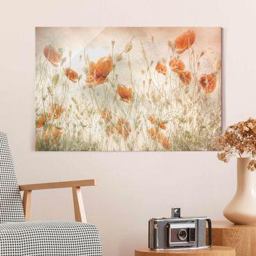 Glasbild - Mohnblumen und Gräser im Feld - Querformat