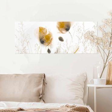 Glasbild - Mohnblumen und zarte Gräser im weichen Nebel - Panorama