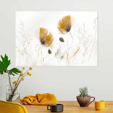 Glasbild - Mohnblumen und zarte Gräser im weichen Nebel - Querformat