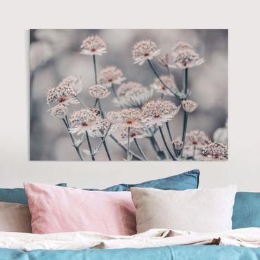 Leinwandbild - Mystischer Blütenstrauch - Hochformat 3:2