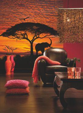 National Geographic Fototapete - Afrika Sonnenuntergang