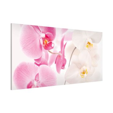 Magnettafel - Delicate Orchids - Blumenbild Memoboard Panorama Quer
