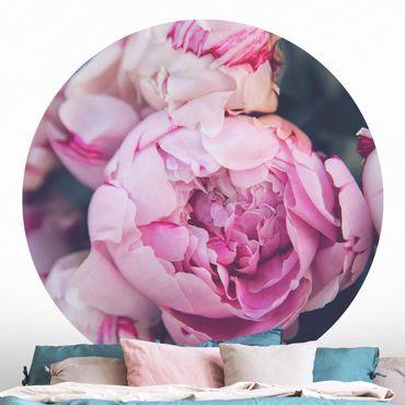 Runde Tapete selbstklebend - Pfingstrosenblüte Shabby