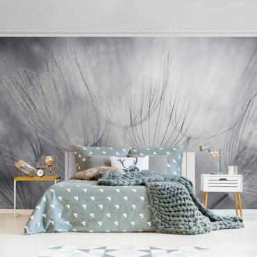 Metallic Tapete  - Pusteblumen Makroaufnahme in schwarz weiß