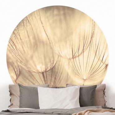 Runde Tapete selbstklebend - Pusteblumen Nahaufnahme in wohnlicher Sepia Tönung