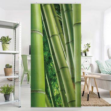 Raumteiler - Bamboo Trees No.2 250x120cm