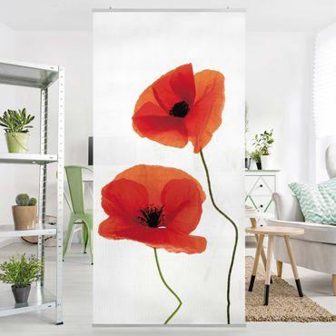 Raumteiler - Charming Poppies 250x120cm