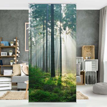Raumteiler - Enlightened Forest 250x120cm