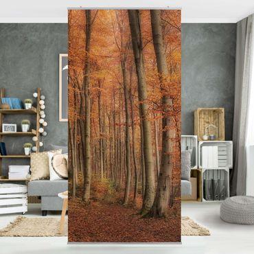 Raumteiler - Herbstspaziergang 250x120cm