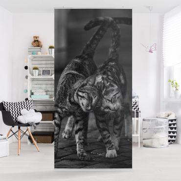 Raumteiler - Kätzchenfreundschaft - 250x120cm