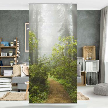 Raumteiler - Nebliger Waldpfad 250x120cm