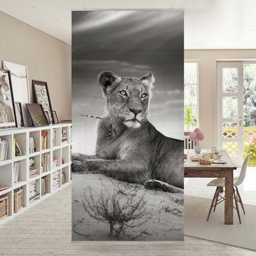 Raumteiler - Resting Lion 250x120cm