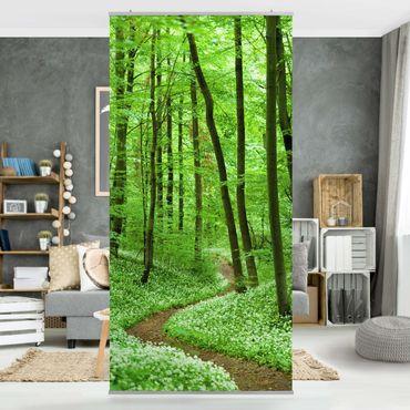 Raumteiler - Romantischer Waldweg 250x120cm