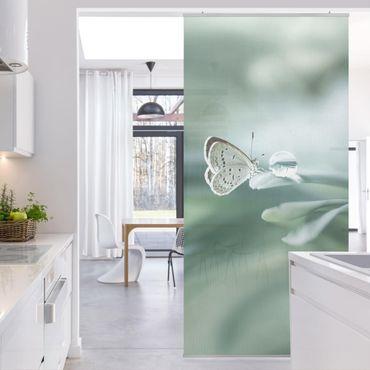 Raumteiler - Schmetterling und Tautropfen in Pastellgrün - 250x120cm