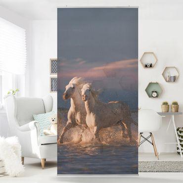Raumteiler - Wilde Pferde in Kamargue - 250x120cm