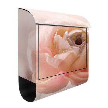 Briefkasten - Rosa Blüte im Fokus